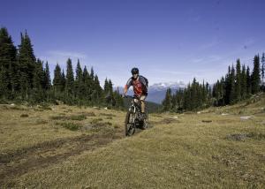 martha creek biking downhill mountain